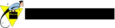 Lansultants logo
